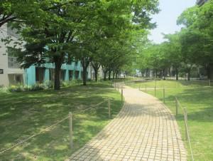 愛大キャンパスの写真1